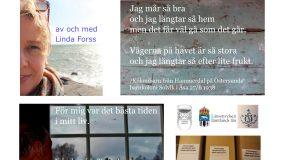 Boka Berättelser och betraktelser från barnkolonierna i Åsa och Ånn